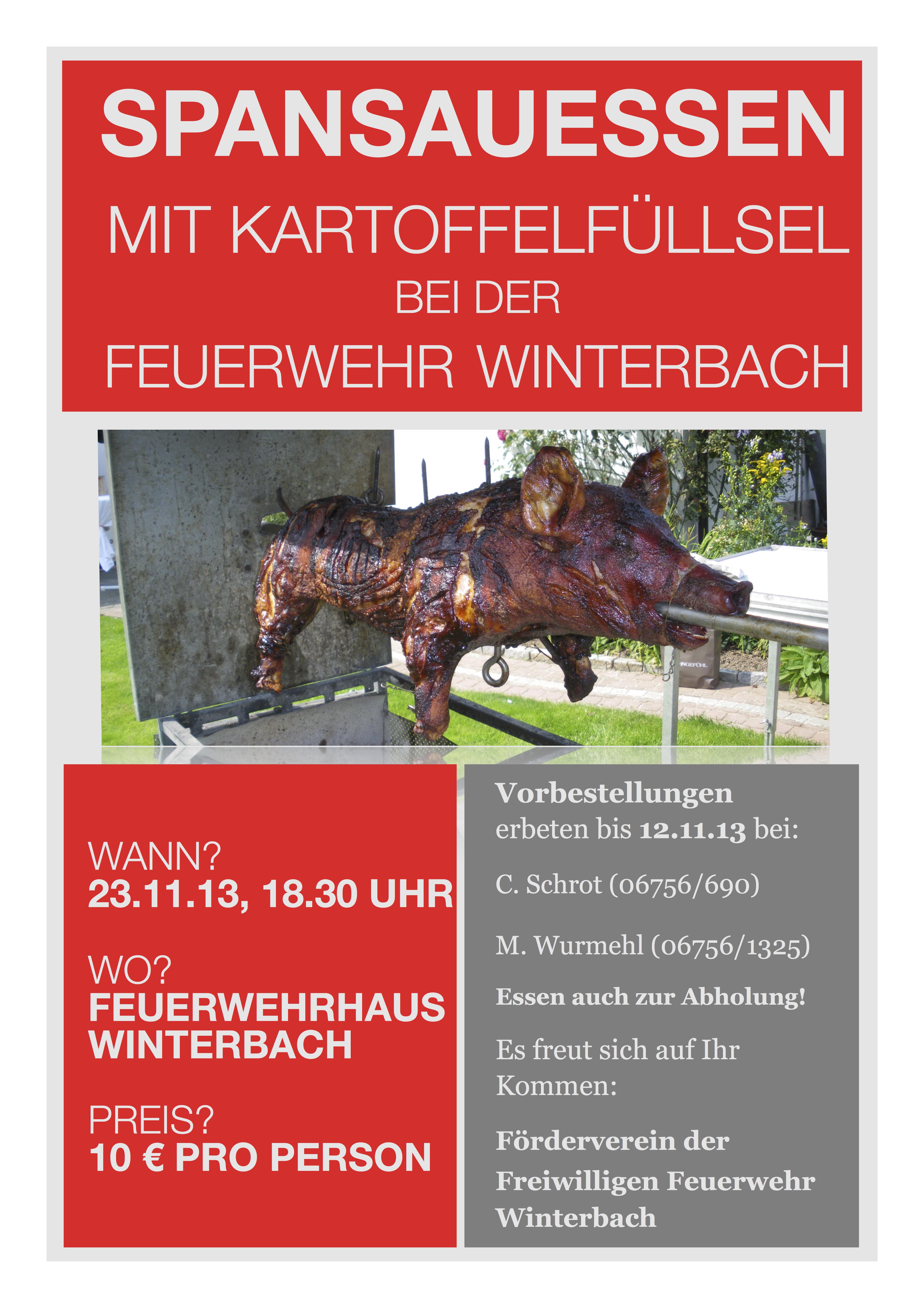 feuerwehr_spansauessen_2013