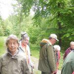 senioren-im-wald-2014-044